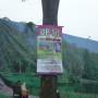 Iklan Pohon